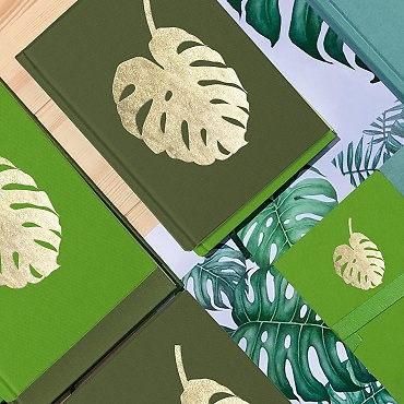 Limited Edition: Monstera